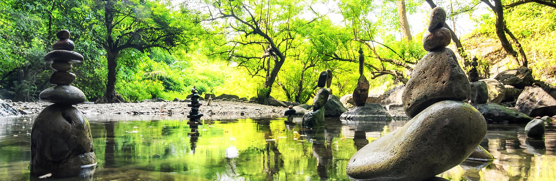 calm and spiritual nature environment